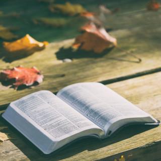 Rozjímání nad Písmem sv.
